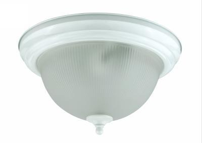 Champions Lighting in Houston, Texas, United States,  19Z5D, 13W X 2 CEILING LAMP,G24Q-1 SOCKET, 13W Ceiling Lamp