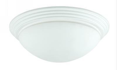 Champions Lighting in Houston, Texas, United States,  19Z5M, 60W X 2 CEILING LAMP, 60W Ceiling Lamp