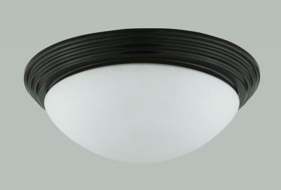 Champions Lighting in Houston, Texas, United States,  19Z5Q, 60W CEILING LAMP, 60W Ceiling Lamp