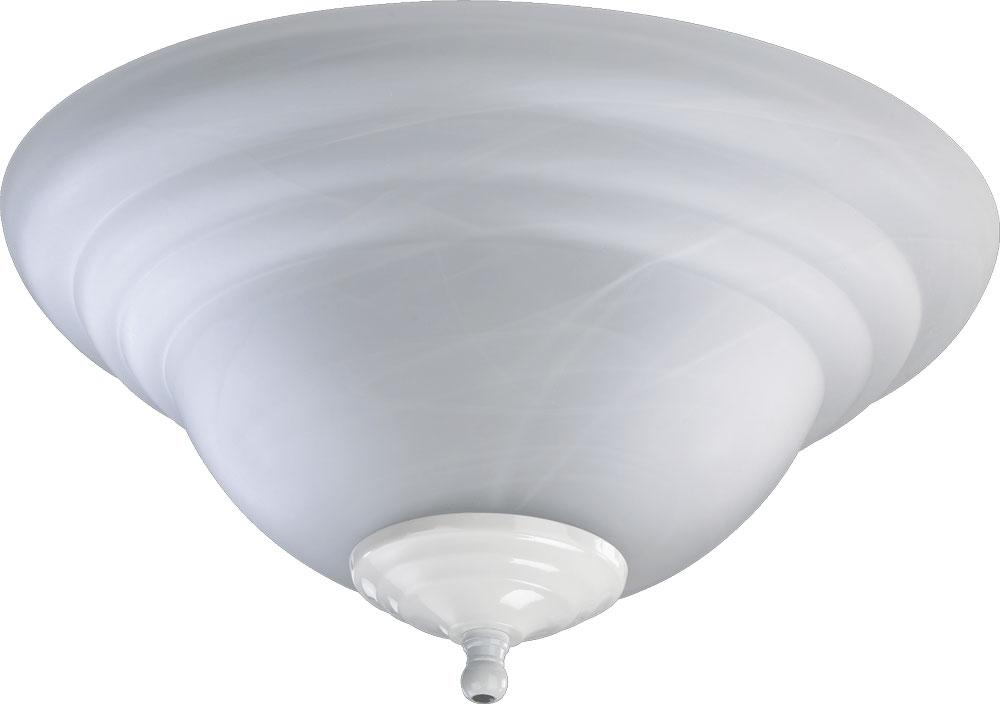 Champions Lighting in Houston, Texas, United States,  5Q3Z, FX ALAB CFL BWL -STN/WH,